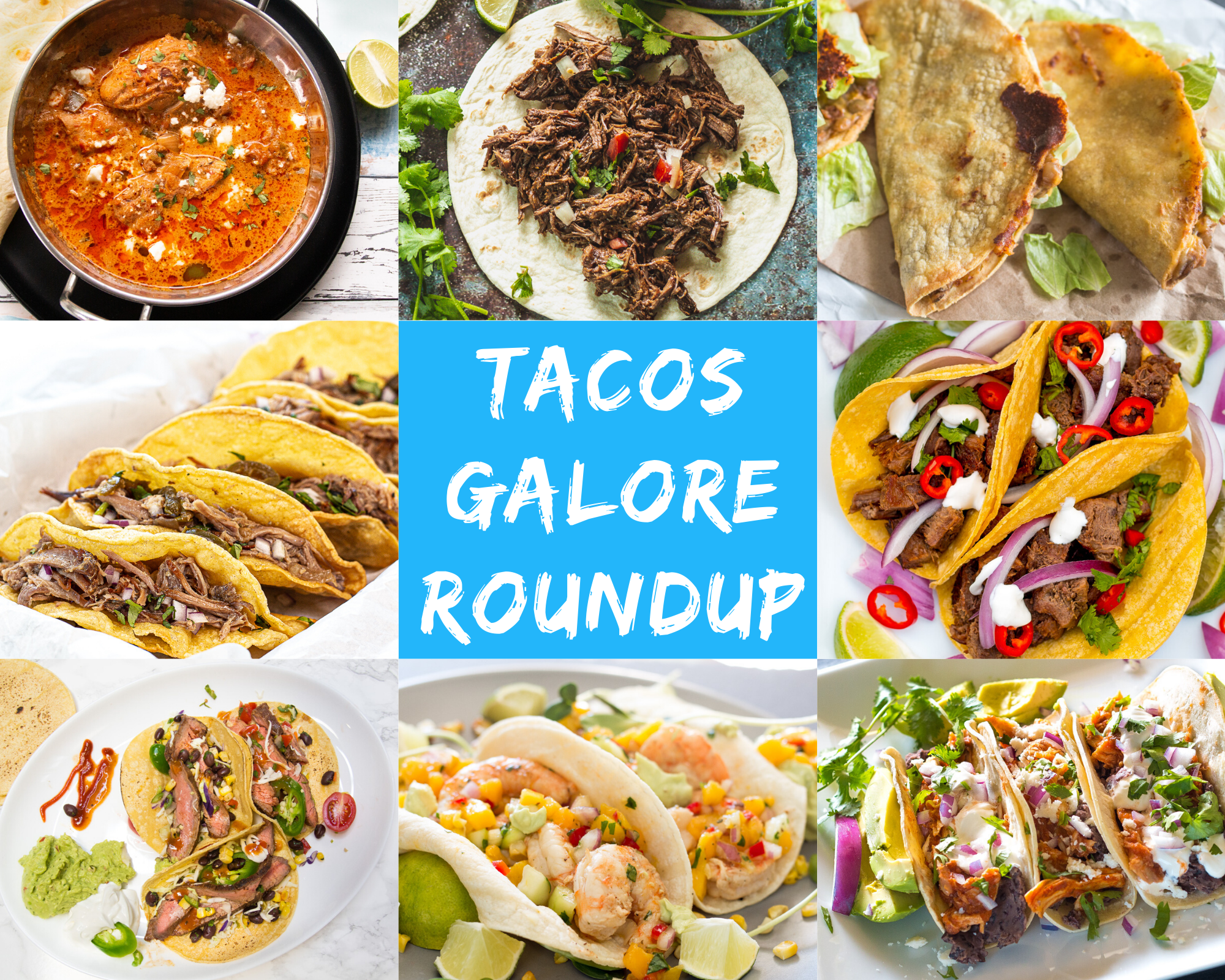 Tacos Galore Roundup - A roundup of the most delicious tacos you will ever need in your life!